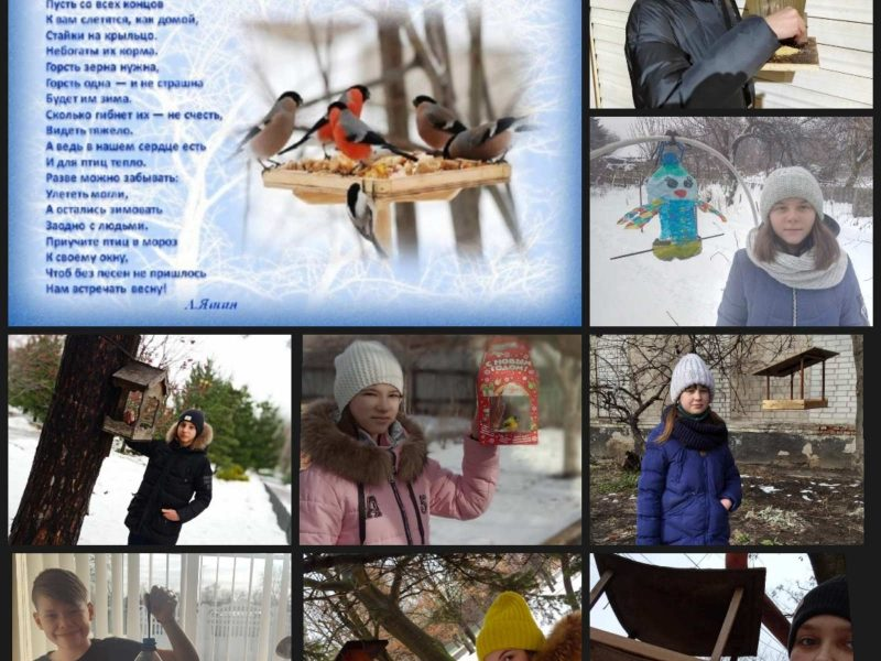 «Доброта начинается с малого. Покормите птиц зимой!»